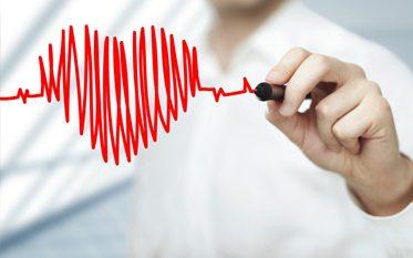 Szív és érrendszer - VitaminNagyker.hu